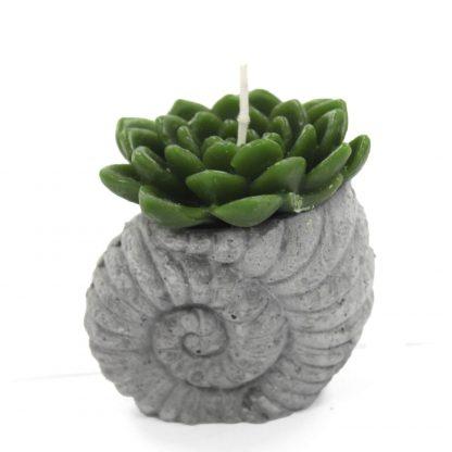 Kaktuse motiiviga küünal