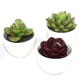 Kaktusekujuline küünal