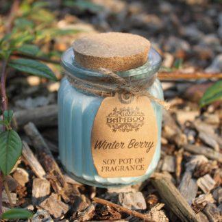 Sojavahast lõhnaküünal Talvemarjad